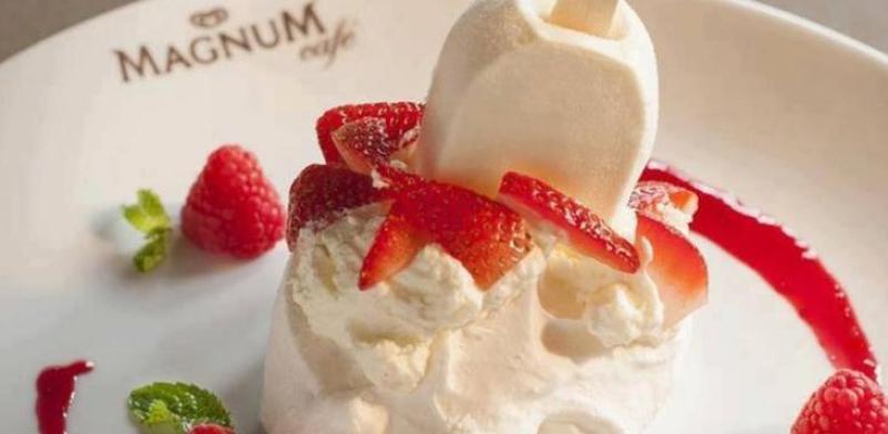 冰之乐冰淇淋机加盟