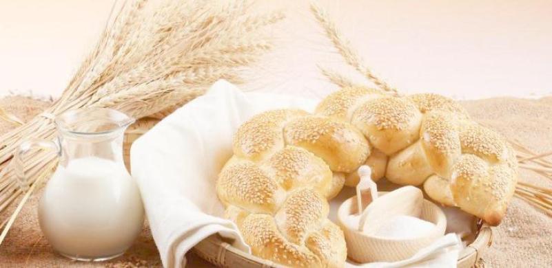 面包路加盟