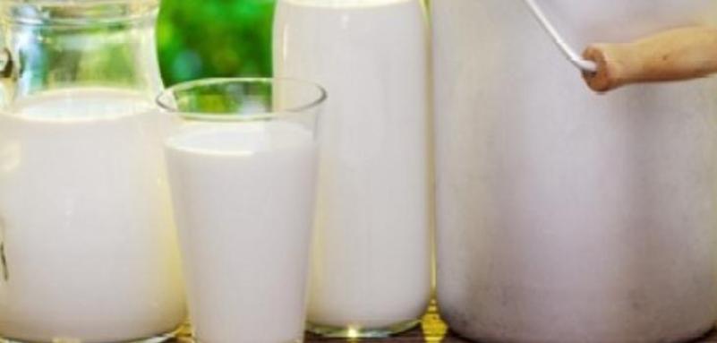 天天禾鲜奶吧加盟