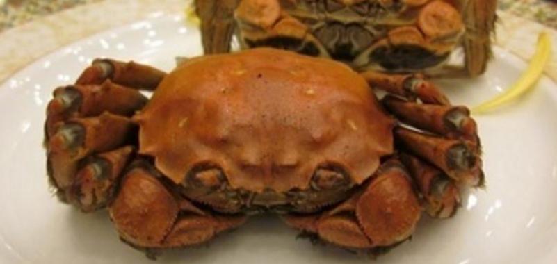 成隆行蟹加盟