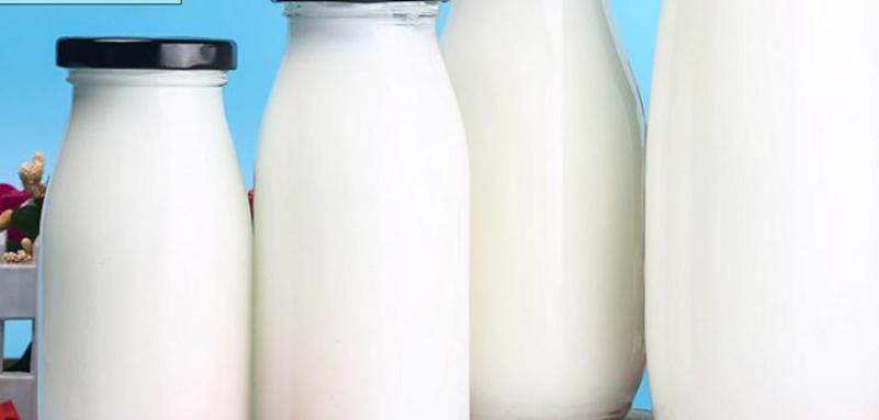 健康飞扬鲜奶吧加盟