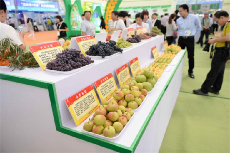 绿色有机食品加盟