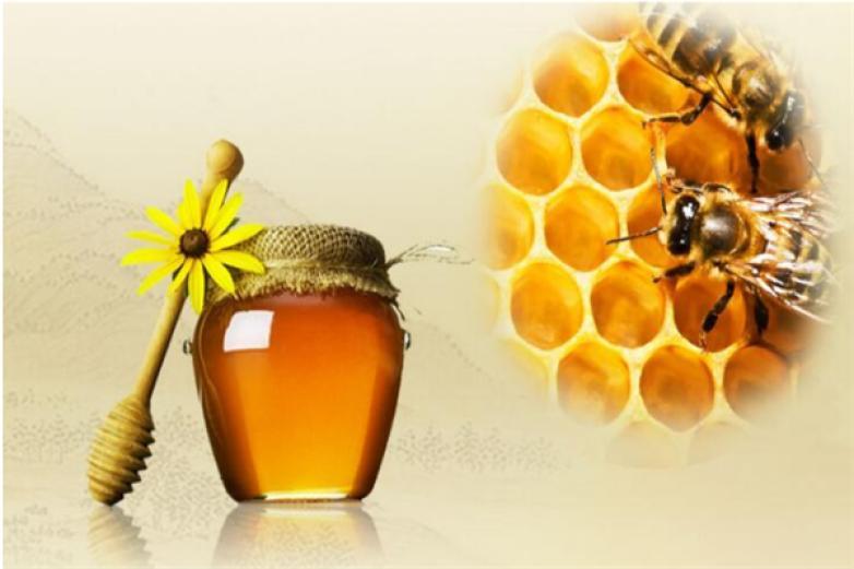一号蜂农加盟