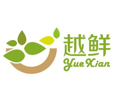越鮮越南牛湯粉