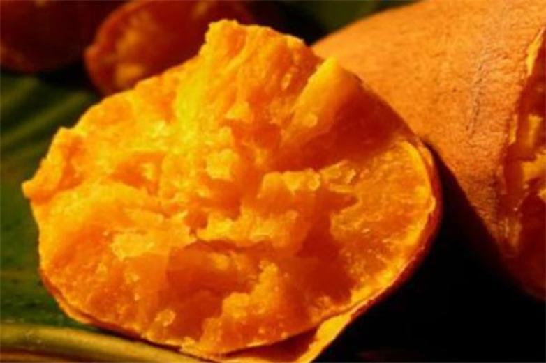 薯立方加盟