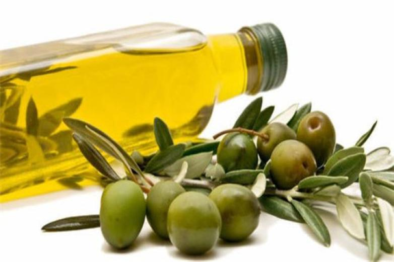 美格尔橄榄油加盟