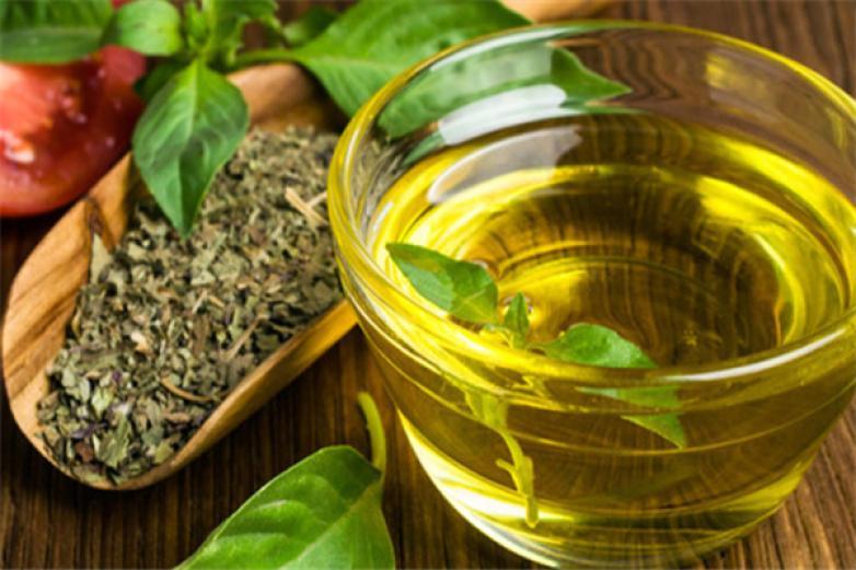 山茶油加盟