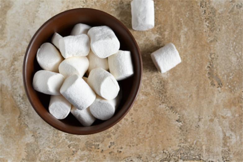 仙女丝棉花糖加盟