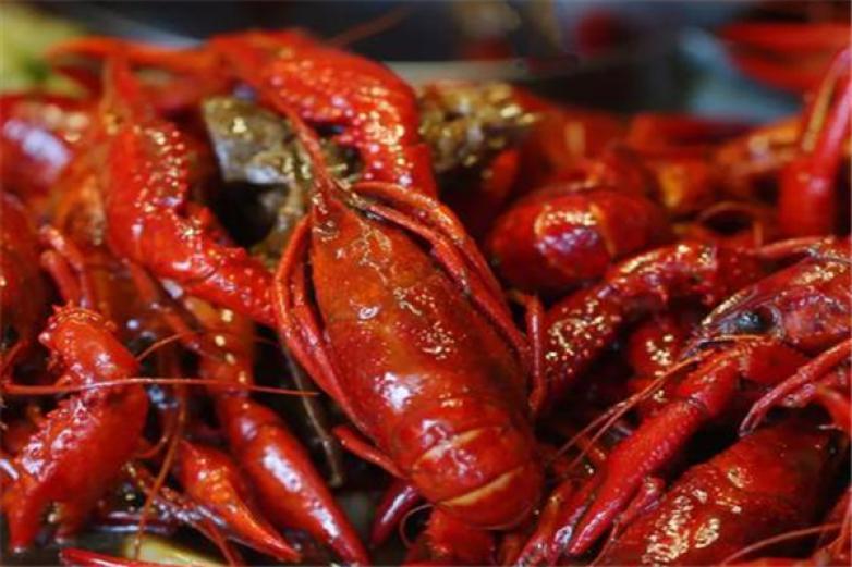 红大龙虾加盟