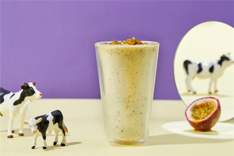 酸奶牛加盟