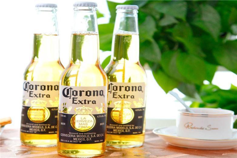 科罗娜啤酒加盟