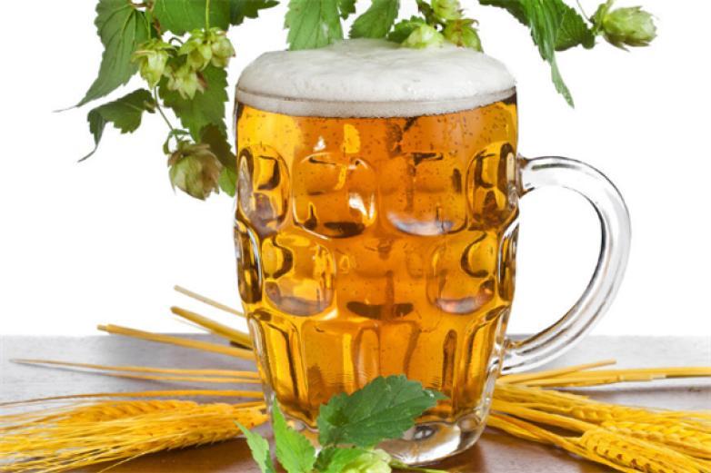 ���_啤酒加盟