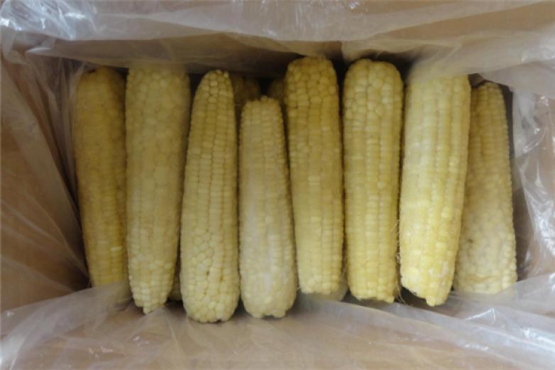 速冻糯玉米加盟