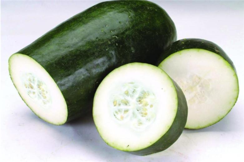 粤康蔬菜生化食品加盟