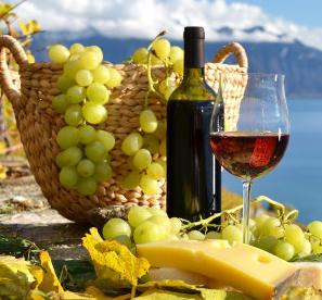 黑加仑葡萄酒
