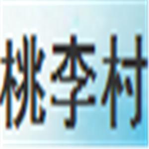 桃李村调味品