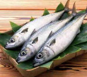 淡水鱼食品