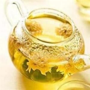 金银花茶饮料