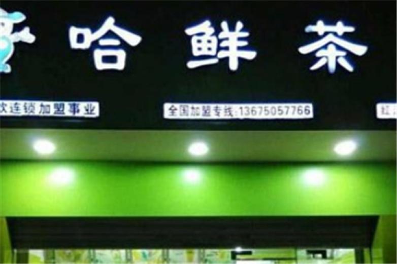 哈鲜茶加盟