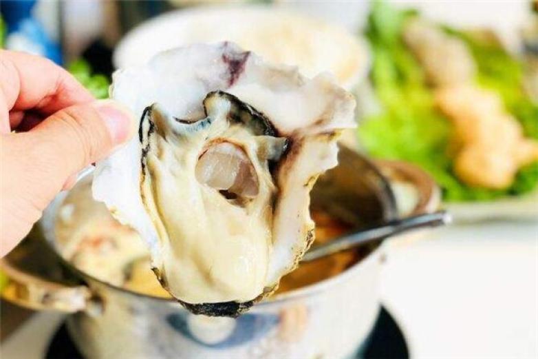 蓝波斯菊鲜汤火锅加盟