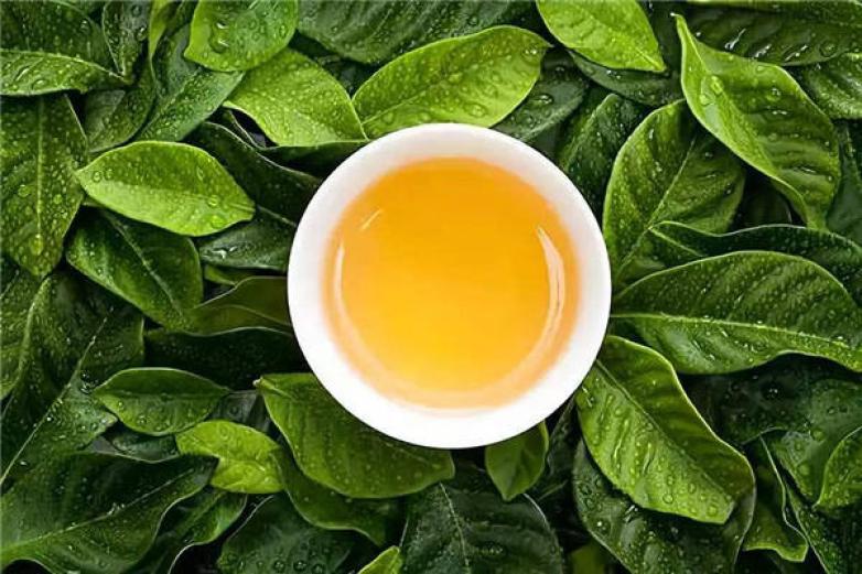 一品茶庄加盟