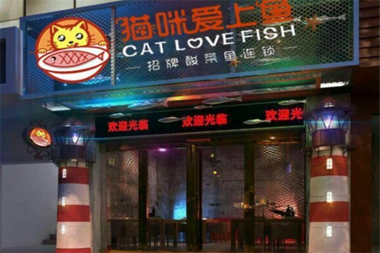 猫咪爱上鱼酸菜鱼加盟