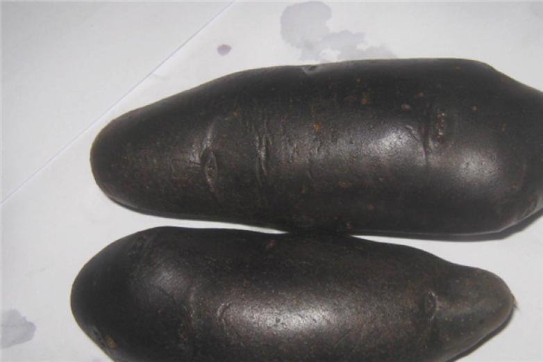 黑美人土豆加盟