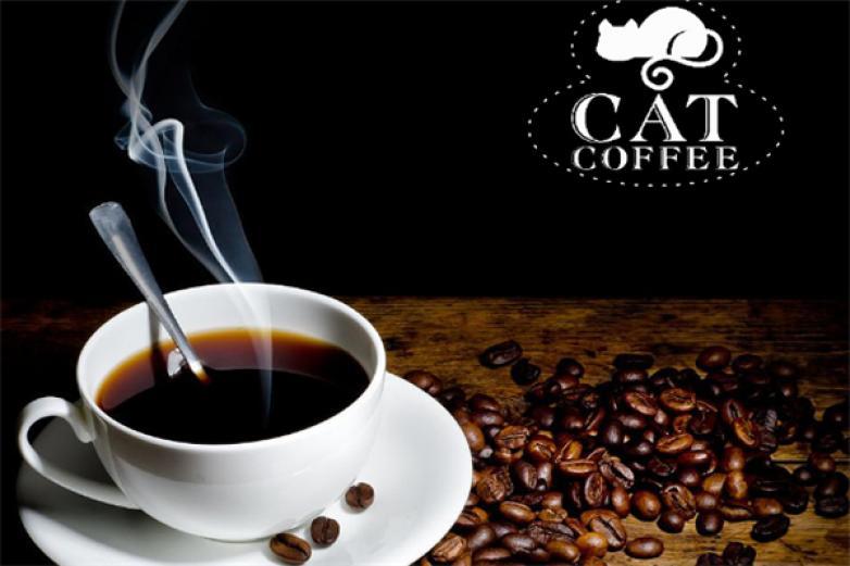猫咖啡加盟