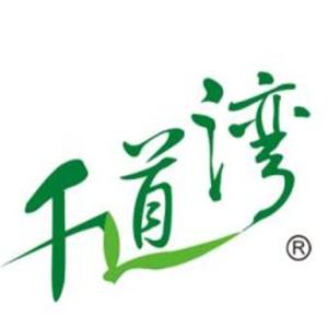 千道灣安吉白茶