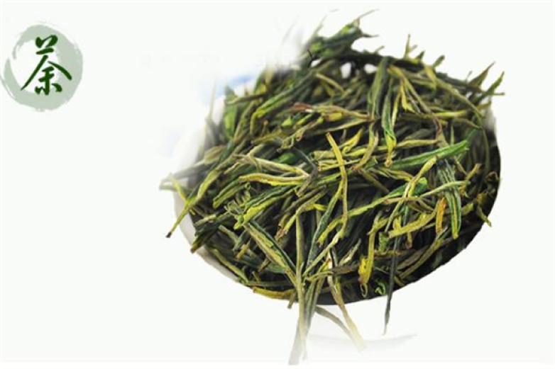 千道灣安吉白茶加盟