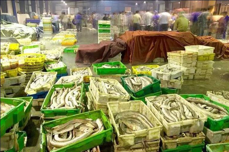 攀华信农副食品加盟