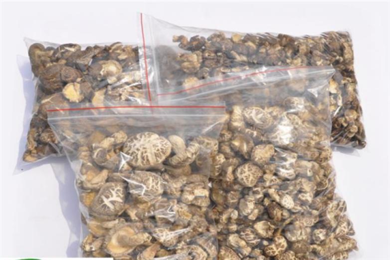 美亚斯白花菇加盟