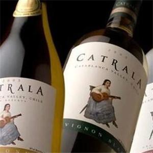 智利拉菲葡萄酒