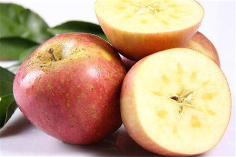 百森水果加盟