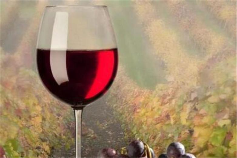 绿色庄园葡萄酒加盟
