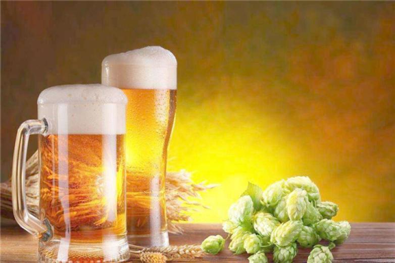 金馆长啤酒加盟