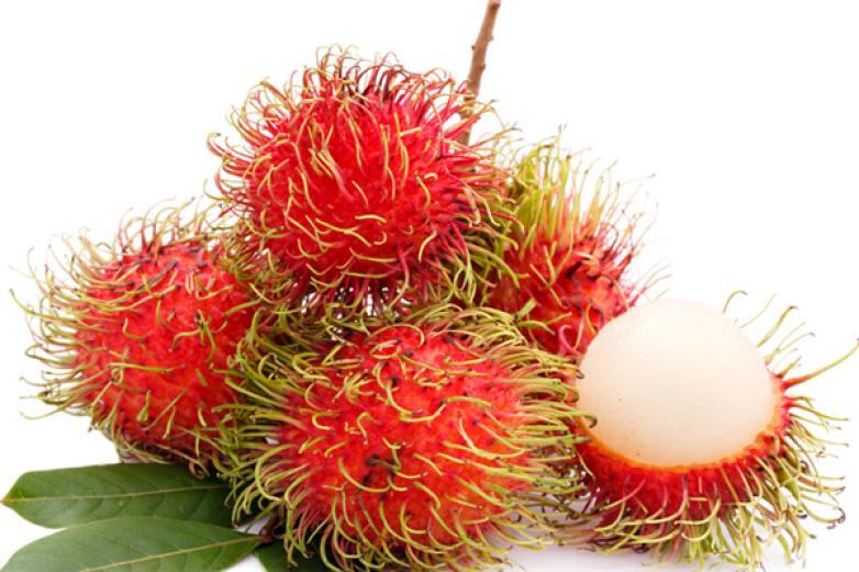 红毛丹水果加盟