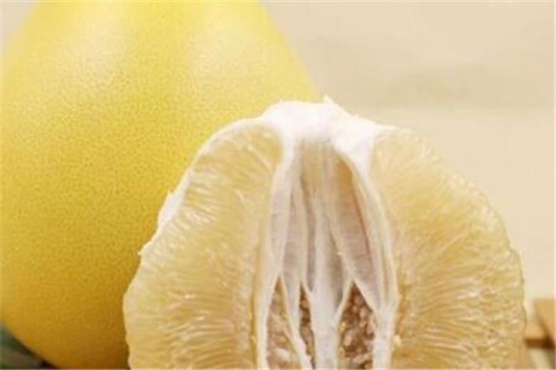 梅州金柚加盟