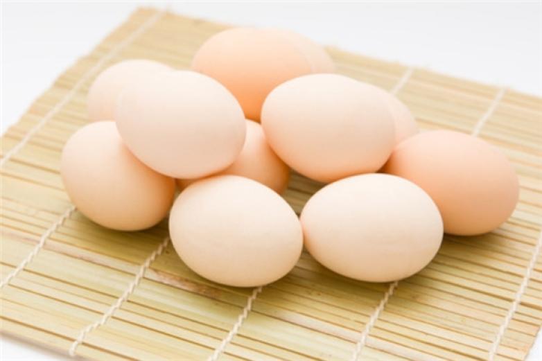 金翼蛋品加盟