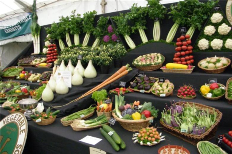 壽光蔬菜產業加盟