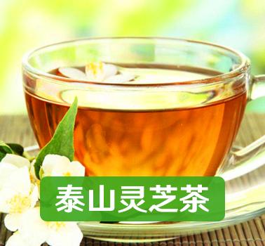 泰山灵芝茶