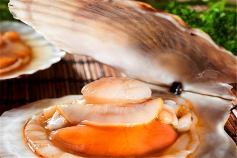 海洋食品加盟