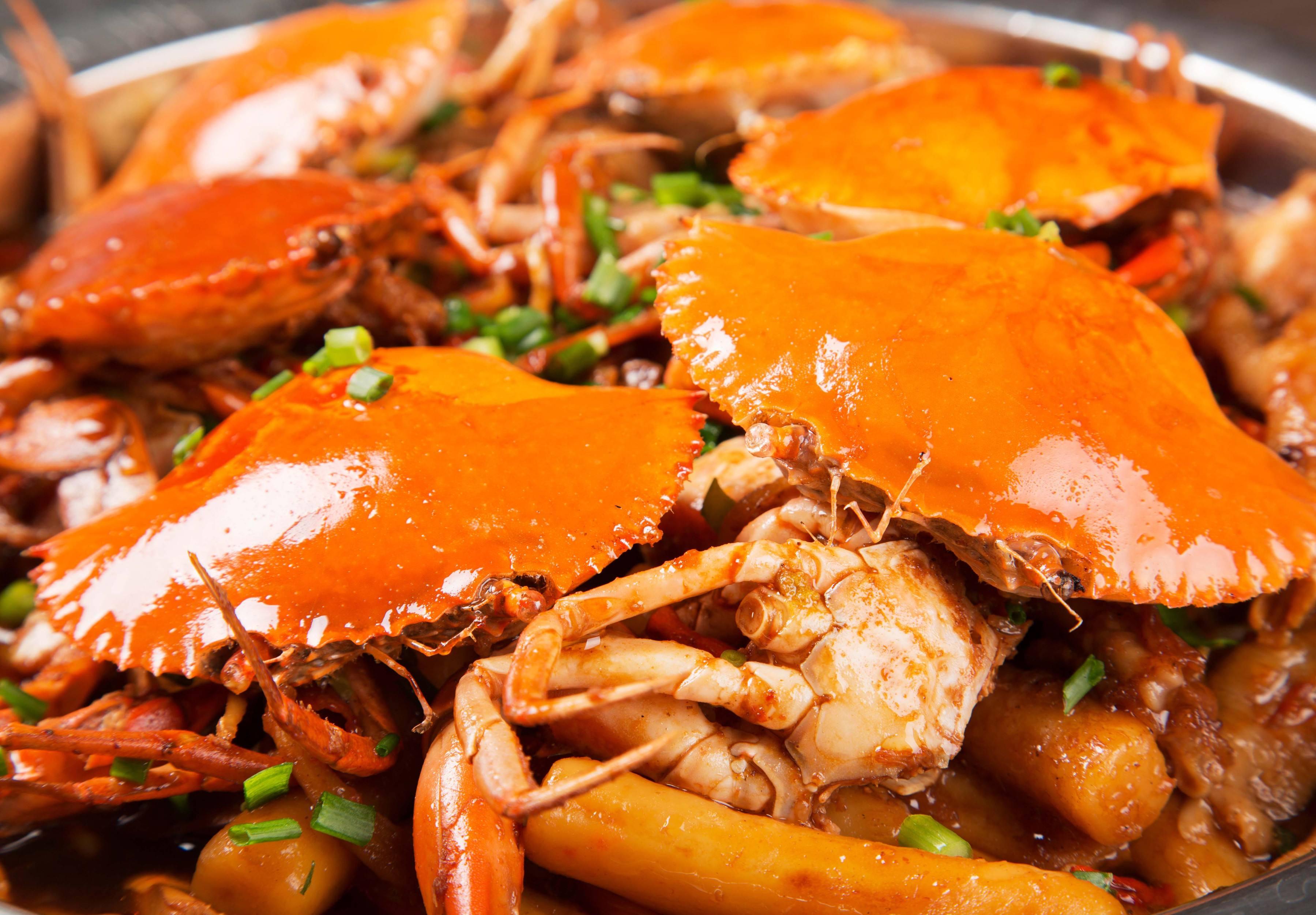 多嘴肉蟹煲加盟费多少