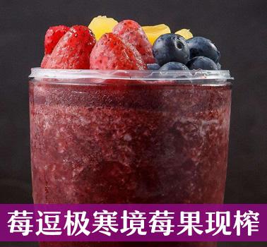 莓逗极寒境莓果现榨