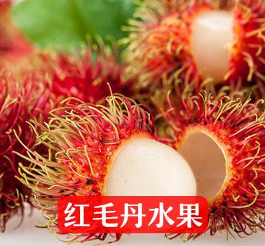 红毛丹水果