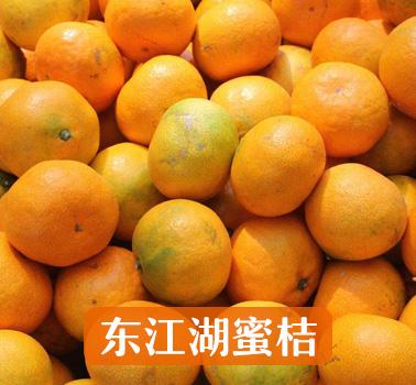 东江湖蜜桔