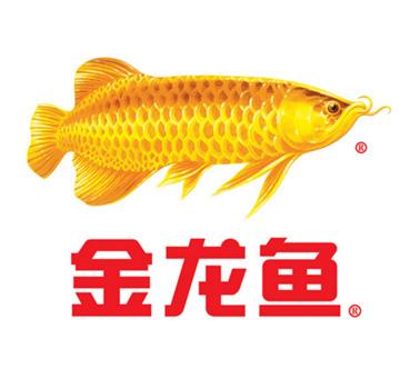 金龙鱼食用油