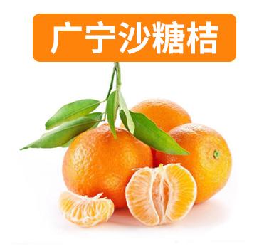 广宁沙糖桔