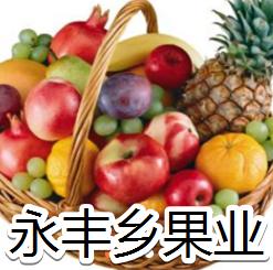 永丰乡果业