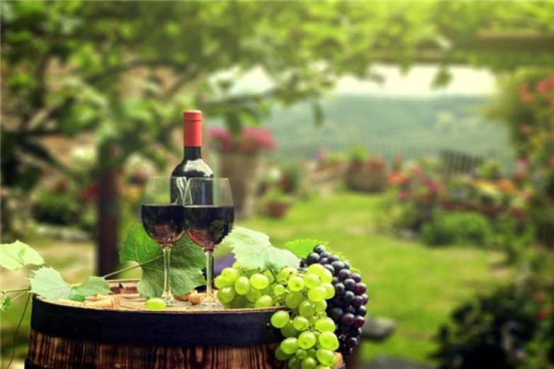 一千零一夜葡萄酒加盟